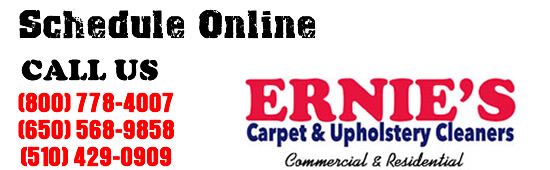 Call Ernie's Carpet Cleaning